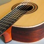 Brazilian and European Spruce guitar